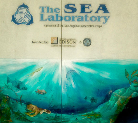 At the Sea Laboratory, which is open to the public, Corps members teach 8,000 youth each year about marine life and the importance of protecting the oceans.