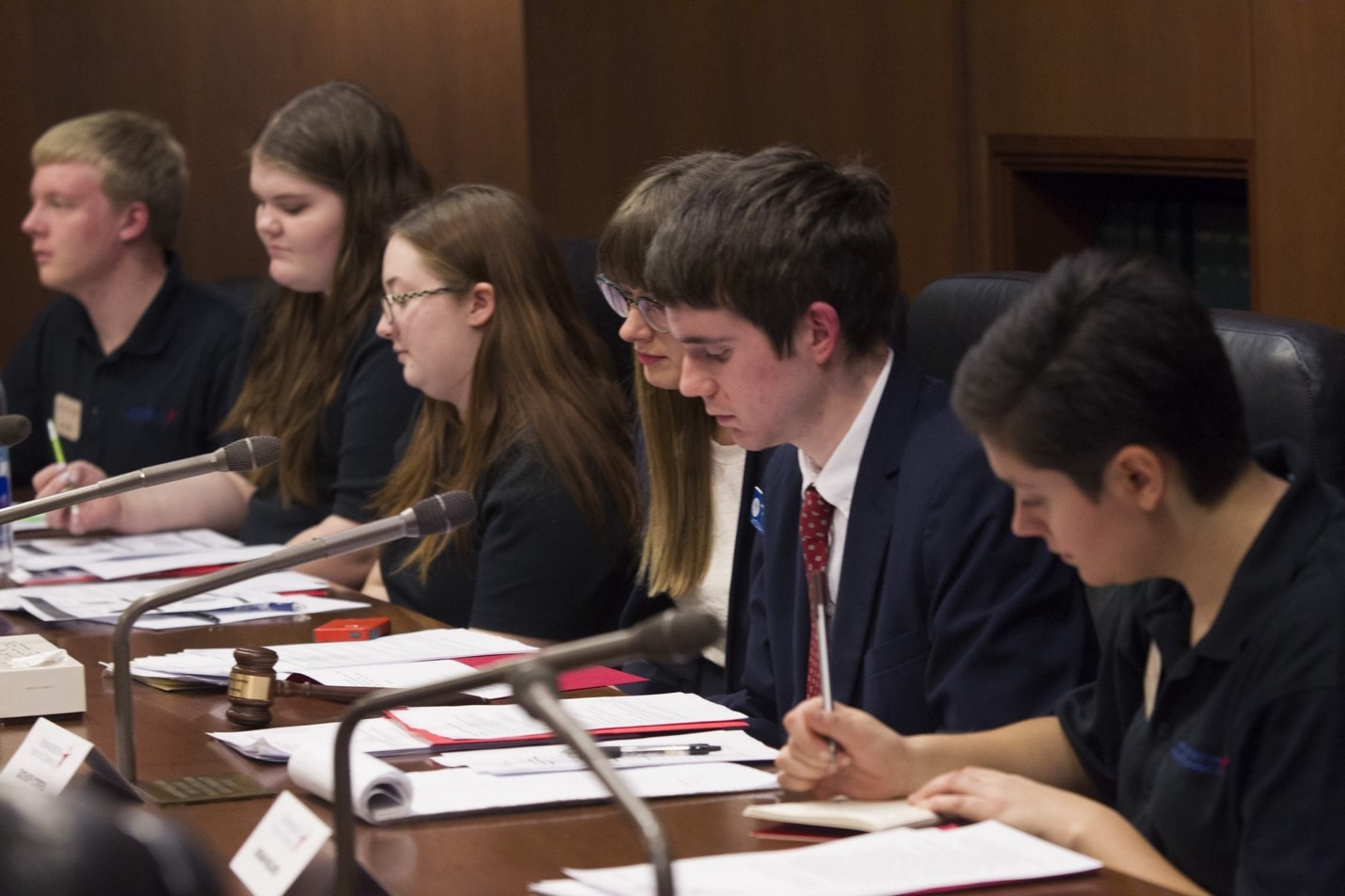 Every year at Youth Day at the Capitol, young people involved in the Minnesota Alliance With Youth advise lawmakers on legislation affecting youth.