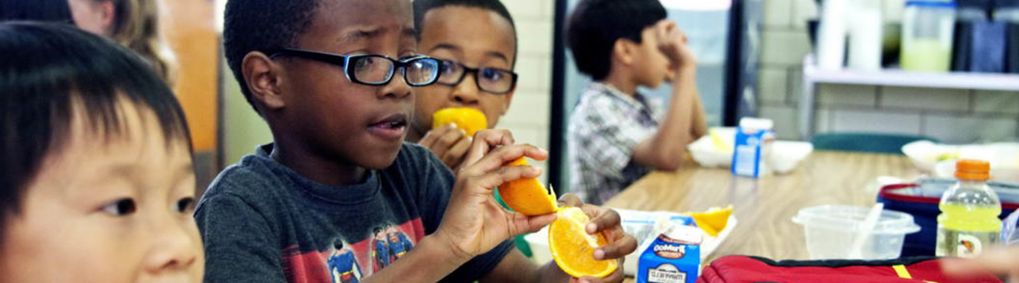 Young african american boy was photographed as he was eating a freshly peeled sectioned orange